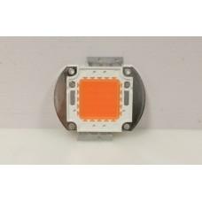 Светодиодная фито матрица YXO Full 50W