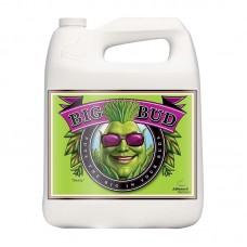Стимулятор Big Bud Liquid 500 mL