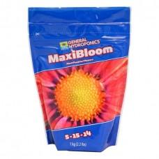 Flora Maxi Bloom 1kg
