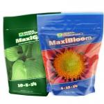 GHE Flora Maxi (2)