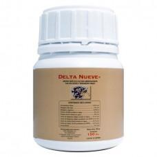 Delta Nueve