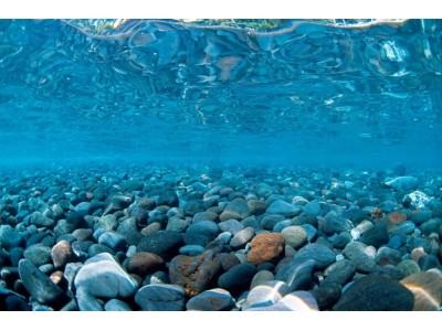 Фон двухсторонний Barbus Горная река - Зеленое море, выс 30см