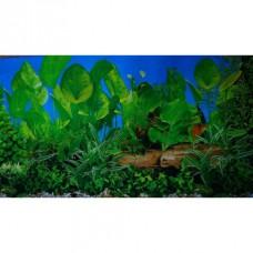 Фон для аквариума двухсторонний 30см Растения с корягой син-Растения с корягой гол