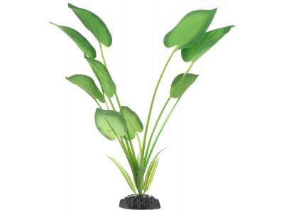 Шелковое растение Barbus Эхинодорус 30см