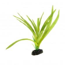 Гигрофила зелёная 30см