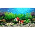 Фон для аквариума (10)