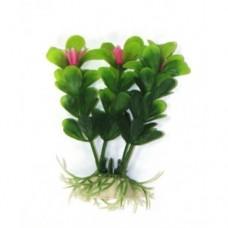 Лобелия зелёная 10см
