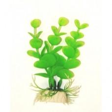 Лобелия светло-зелёная 10см