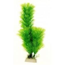 Лимнофила зеленая 20см